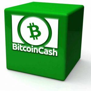 bitcoin cash miners break records processing multiple 32 mb blocks 300x300 - Bitcoin Cash Miners Break Records Processing Multiple 32 MB Blocks