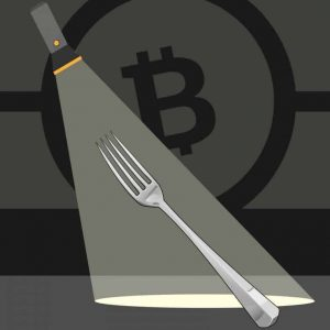 fork watch list of bch services providing fork support and network monitoring tools 300x300 - Fork Watch: List of BCH Services Providing Fork Support and Network Monitoring Tools