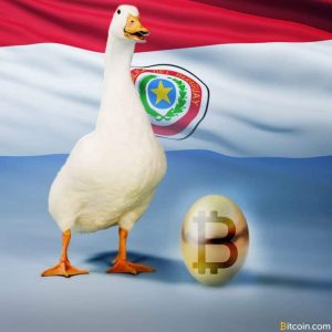 paraguay to provide land for golden goose mining project 300x300 - Paraguay to Provide Land for 'Golden Goose' Mining Project