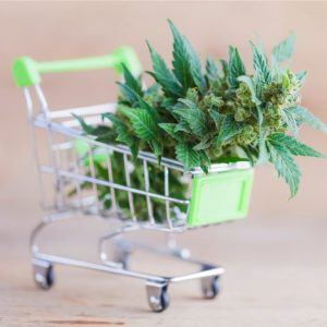 Canada Encourages Cannabis Sector to Transact Discreetly 300x300 - Canada Encourages Cannabis Sector to Transact Discreetly